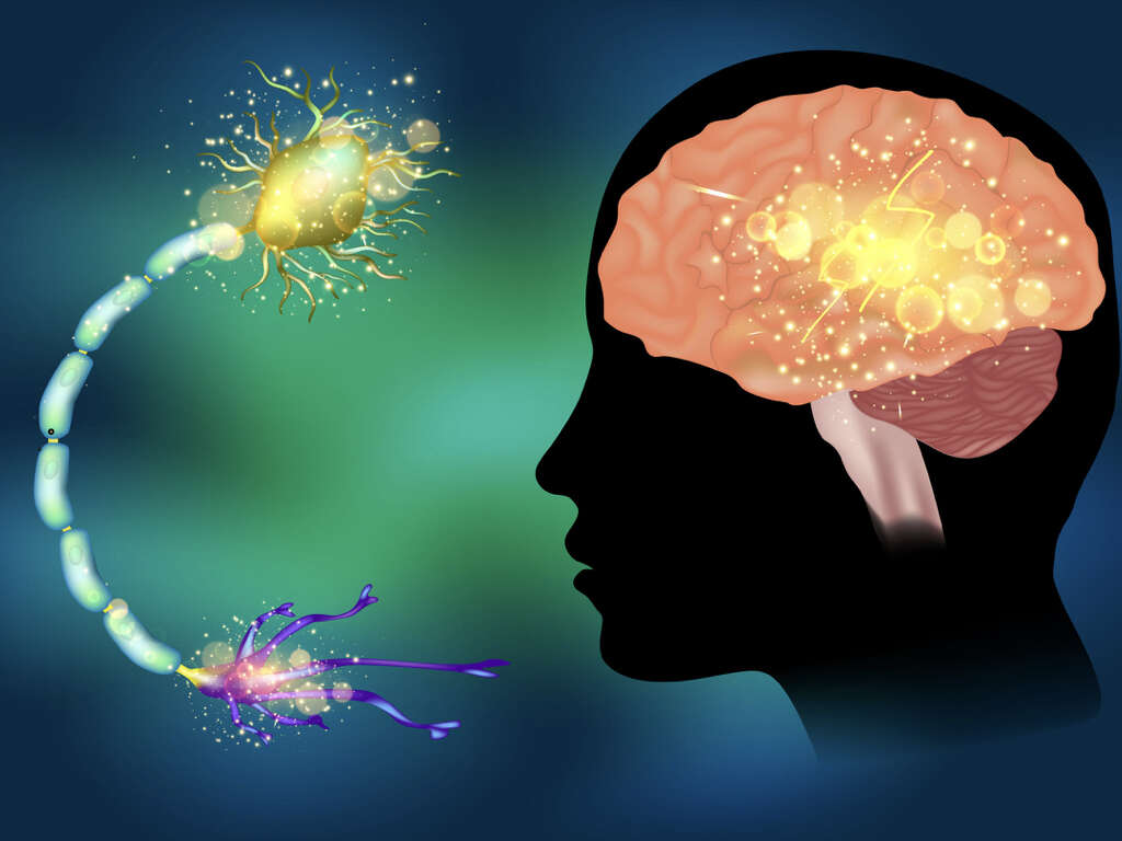 Neurocysticercosis